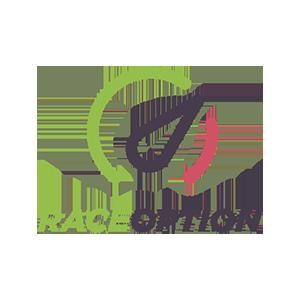 raceoption300